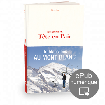 Tête en l'air, Richard Gaitet, Editions Paulsen, collection Demarches